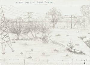 school farm sketch